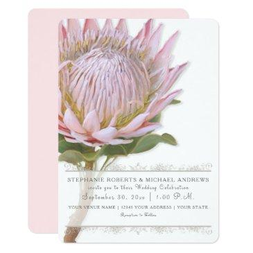 elegant simple modern floral pink protea flower invitations